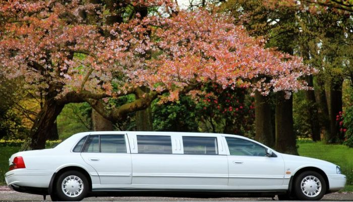 crown-limousines-christchurch-classic